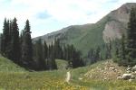 23-401downhill